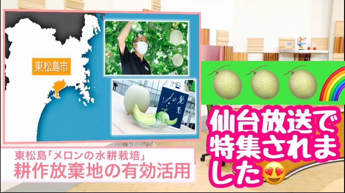 仙台放送「ともに」水耕栽培メロン